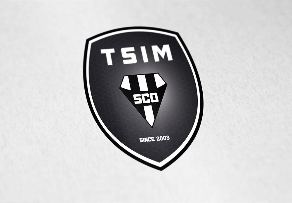 Logo de TSIM